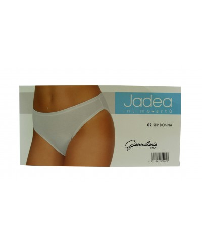 3 Jadea briefs art. 02
